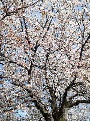 新潟メンズエステ 癒々・匠(ユユ・タクミ) あず(38)の4月3日写メブログ「ドキドキ」
