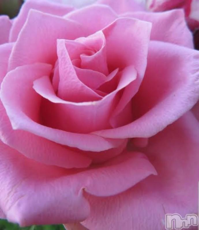 松本デリヘルELYSION (エリシオン)(エリシオン) 紫音 shion(24)の2021年6月9日写メブログ「6月9日 18時26分のブログ」
