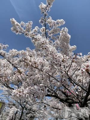 新潟駅前ガールズバーLUZA(ルーザ) まりあの4月16日写メブログ「寂しいなって」