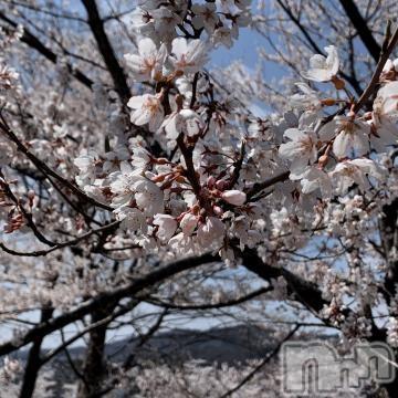 上越デリヘル密会ゲート(ミッカイゲート) 瑛茉(えま)(30)の2021年4月8日写メブログ「お礼」