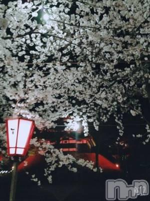 長岡人妻デリヘル 不倫商事 長岡営業所(フリンショウジナガオカエイギョウショ) 渋沢なつの(43)の4月3日写メブログ「.*✿夜桜.*✿」