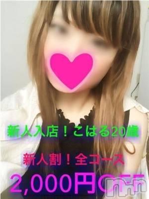 こはる☆☆☆(20) 身長164cm、スリーサイズB87(E).W57.H88。 Apricot Girl在籍。
