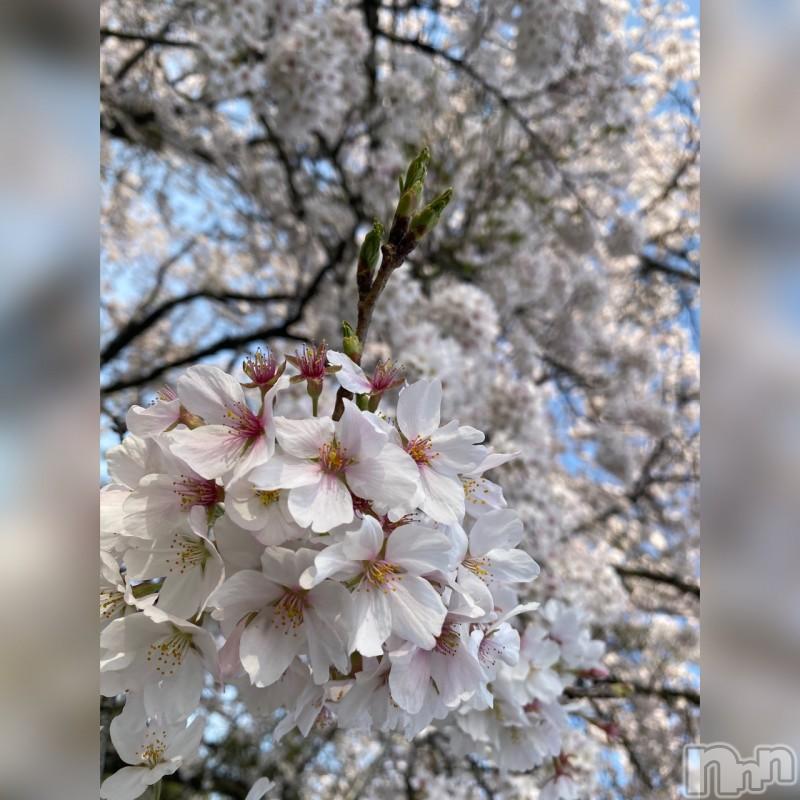 松本デリヘルVANILLA(バニラ) るりか(20)の2021年4月1日写メブログ「いい天気😘」