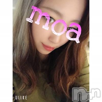新人 もあ(18)