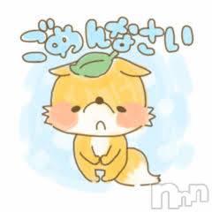新潟ソープアラビアンナイト ねね(21)の11月15日写メブログ「申し訳ございません。」