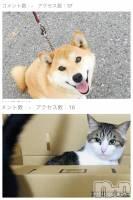 松本駅前キャバクラclub銀水(クラブギンスイ) りこの1月20日写メブログ「(´˙꒳˙)...。」