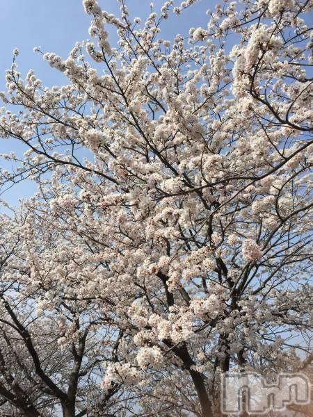 新潟中央区メンズエステNiigata Relaxation salon room(ニイガタリラクゼーションサロンルーム) 蓮見ふうかの4月1日写メブログ「もうすぐかな」