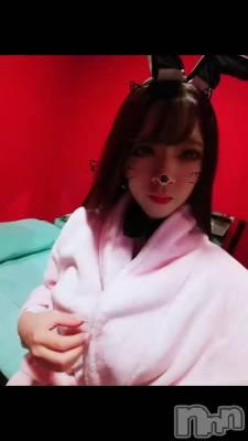 12月8日 21時51分の動画