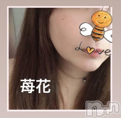 新潟人妻デリヘル 人妻の城(ヒトヅマノシロ) 苺花(もか)(35)の7月20日写メブログ「✨エリーゼお礼✨」