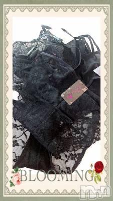 新潟デリヘル Max Beauty 新潟(マックスビューティーニイガタ) カミラ☆SM女王(26)の12月31日写メブログ「黒レースのスケスケパンティは好きかしら?」