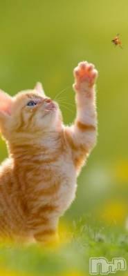 松本人妻デリヘル 恋する人妻 松本店(コイスルヒトヅマ マツモトテン) のどか☆癒し系(37)の7月2日写メブログ「こんにちは」