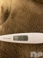 本日の検温。