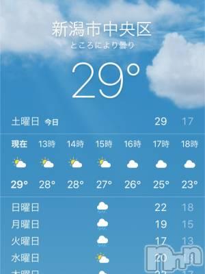 三条デリヘル 激安!!特急グループ三条 奥様 素人(ゲキヤストッキュウグループサンジョウオクサマショロウト) うめの(29)の5月15日写メブログ「29℃だって…」
