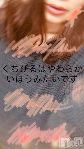 新潟デリヘルMax Beauty 新潟(マックスビューティーニイガタ) せいか(35)の7月15日写メブログ「性欲処理」