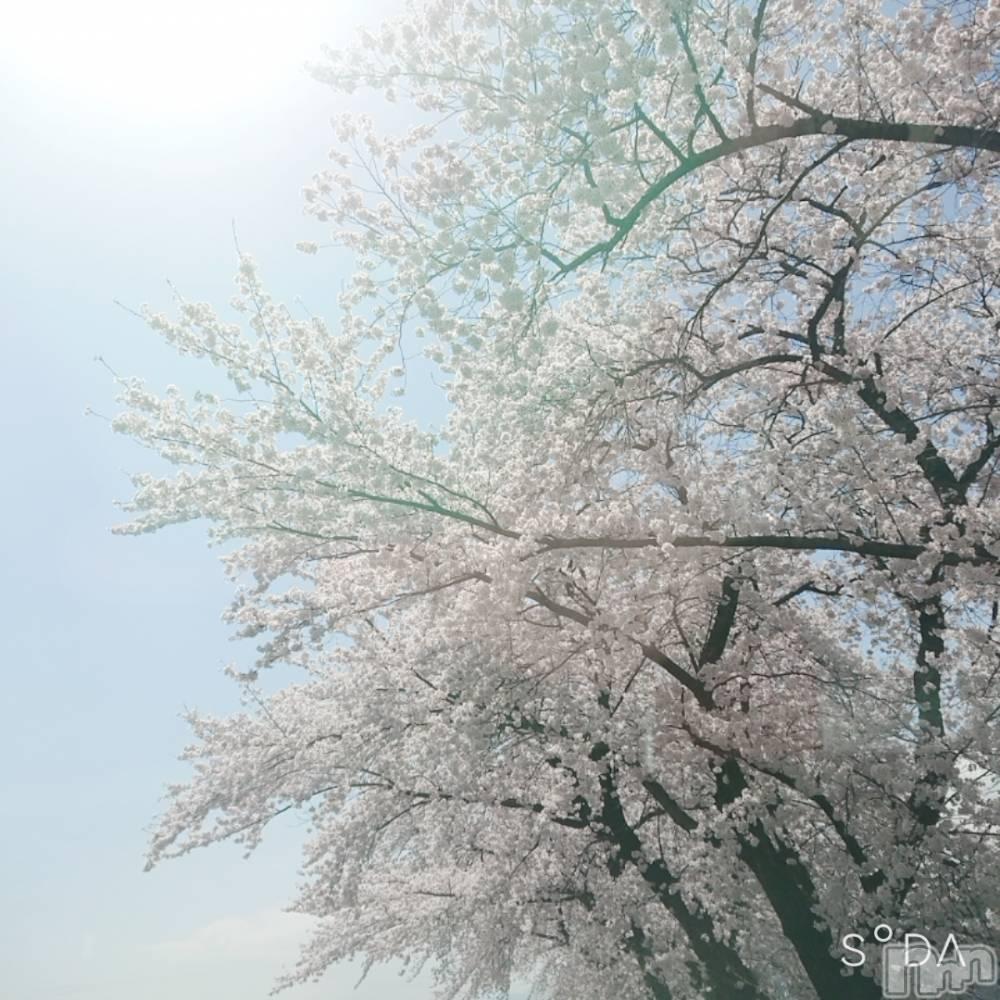 伊那ピンサロLa Fantasista(ラ・ファンタジスタ) まゆ(26)の4月4日写メブログ「楽しかったねー♥」