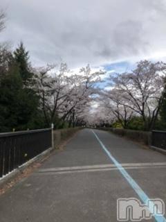 松本デリヘル VANILLA(バニラ) ゆみる(20)の4月4日写メブログ「桜」