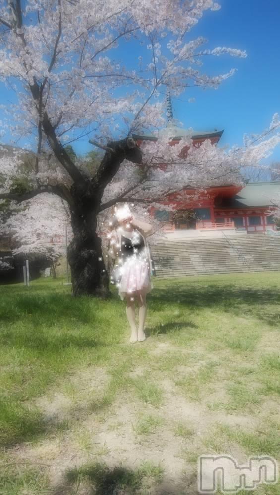 長野人妻デリヘルStory ~人妻物語~(ストーリー) 激安イベント☆るみこ(43)の4月8日写メブログ「綺麗なぁ~ほのかな香りのする~桜の木の下で~」
