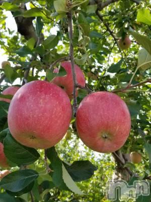 長野人妻デリヘル Story ~人妻物語~(ストーリー) 激安イベント☆るみこ(43)の10月29日写メブログ「りんごが美味しい時期だぁ~(´∇`)」