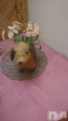 長野人妻デリヘル Story ~人妻物語~(ストーリー) 激安イベント☆るみこ(43)の5月27日写メブログ「お花の綺麗な季節だぁ~。」