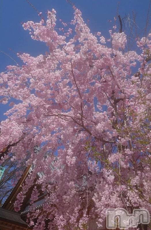 長野人妻デリヘルStory ~人妻物語~(ストーリー) 激安イベント☆るみこ(43)の2021年4月8日写メブログ「お初に御目にかかりました。ありがとうございました。」