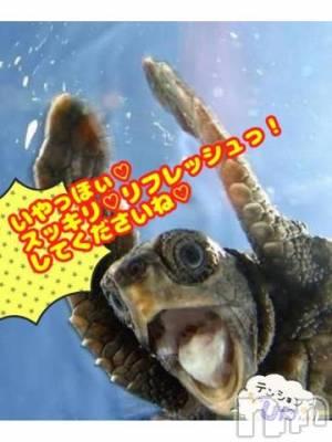 諏訪メンズエステ 出張リラクゼーションSPA 新天地(リラクゼーションスパ シンテンチ) さや☆超絶綺麗☆(21)の7月8日写メブログ「おはようございます?」