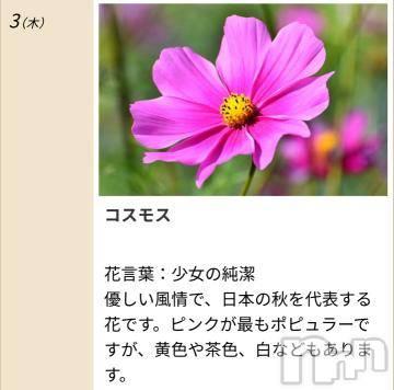 諏訪人妻デリヘルPrecede 諏訪茅野店(プリシード スワチノテン) みさき(41)の9月3日写メブログ「本日のキーワード」