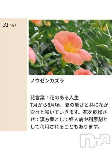 松本デリヘルPrecede 本店(プリシード ホンテン) みさき(41)の8月31日写メブログ「本日のキーワード」