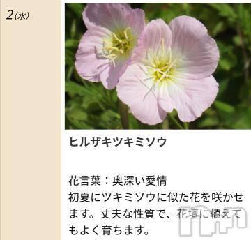 松本デリヘルPrecede 本店(プリシード ホンテン) みさき(41)の9月2日写メブログ「本日のキーワード」