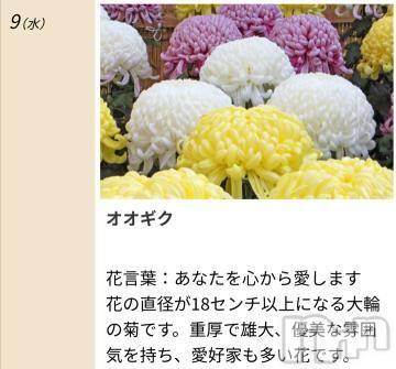 松本デリヘルPrecede 本店(プリシード ホンテン) みさき(41)の9月9日写メブログ「本日のキーワード」