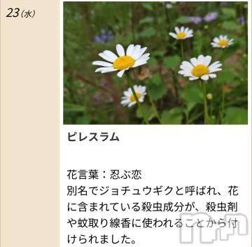 松本デリヘル Precede 本店(プリシード ホンテン) みさき(41)の9月23日写メブログ「本日のキーワード」