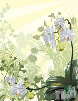 松本人妻デリヘル 恋する人妻 松本店(コイスルヒトヅマ マツモトテン) みか☆綺麗系(39)の9月17日写メブログ「おはようございます」