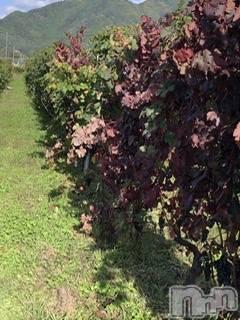 長野リラクゼーションAromarge・Lys(アロマージュ・リズ) の2020年10月26日写メブログ「良いお天気❤️」