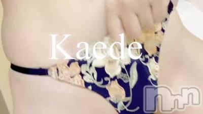 長岡人妻デリヘル mamaCELEB(ママセレブ) かえで(28)の10月9日動画「くい込みの先は…」