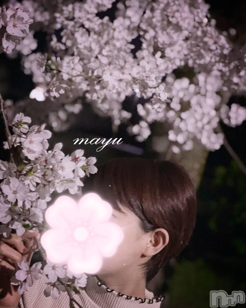 長岡人妻デリヘルmamaCELEB(ママセレブ) 体験 まゆ(26)の4月4日写メブログ「お散歩♪」