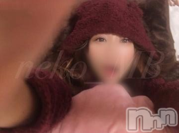 新潟デリヘルMax Beauty 新潟(マックスビューティーニイガタ) ねこ☆超極上美女(28)の2021年2月24日写メブログ「ねこも歩けば棒に当たる」