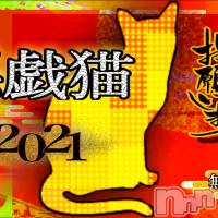 新潟デリヘル A naughty cat 悪戯猫(イタズラネコ)の1月1日お店速報「フリー限定激安39コース!+10分の手こきシステムも!」
