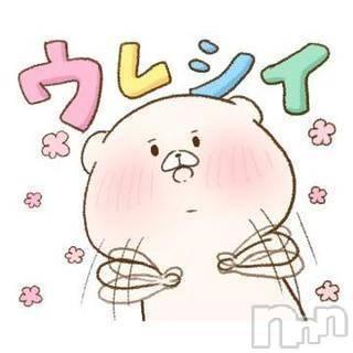 新潟ソープ 本陣(ホンジン) あんず(24)の10月19日写メブログ「??ナイトナビ??」