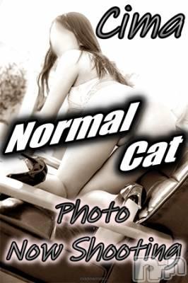 しぃま(29) 身長170cm、スリーサイズB83(B).W59.H85。新潟デリヘル A naughty cat 悪戯猫(イタズラネコ)在籍。