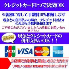 新潟ソープ不夜城(フヤジョウ)の4月11日お店速報「現金・カード併用払いOK!初来店のお客様は最大5000円OFF」