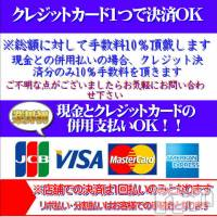 新潟ソープ 不夜城(フヤジョウ)の10月9日お店速報「クレジットカード・現金の併用OK♪60分総額18000円からご利用可能」