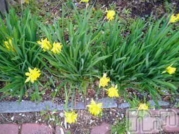 諏訪デリヘルスリーアウト 諏訪(スリーアウト スワ) じゅんこスリー(42)の4月18日写メブログ「こんばんは♪」