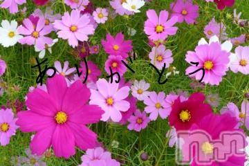 上越デリヘルエンジェル らん(42)の2021年9月16日写メブログ「お礼」
