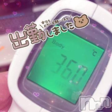 新潟ソープ 新潟バニーコレクション(ニイガタバニーコレクション) フウカ(22)の9月12日写メブログ「出勤っ?」