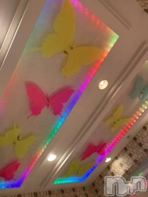 新潟デリヘル 奥様特急 新潟店(オクサマトッキュウニイガタテン) そら(35)の7月29日写メブログ「綺麗????」