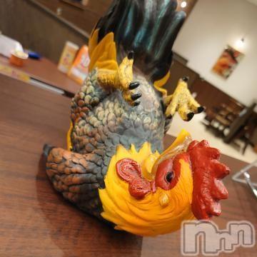 松本デリヘルスリー松本(スリーマツモト) あむワン(19)の2021年10月12日写メブログ「鳥さん!」