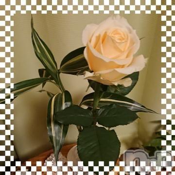 諏訪デリヘルスリーアウト 諏訪(スリーアウト スワ) じゅんこスリー(42)の2021年10月10日写メブログ「お礼」
