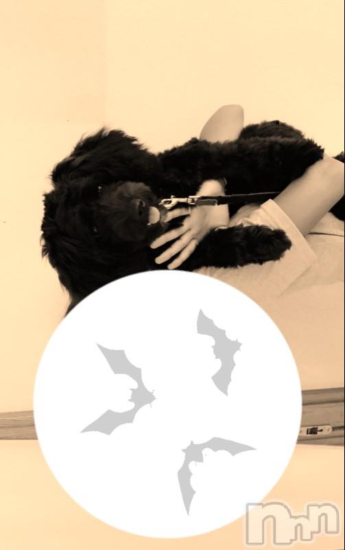 松本人妻デリヘル恋する人妻 松本店(コイスルヒトヅマ マツモトテン) なるみ☆綺麗系(37)の2018年9月16日写メブログ「おはようございます」