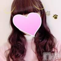 新潟デリヘル 綺麗な手コキ屋サン(キレイナテコキヤサン)の2月21日お店速報「今日は4名の女の子がご案内出来ます♪」