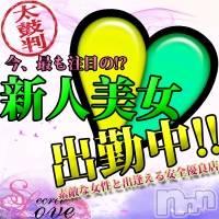 新潟デリヘル Secret Love(シークレットラブ)の12月9日お店速報「本日21:00~新人細身美女つばきサン出勤予約必須」