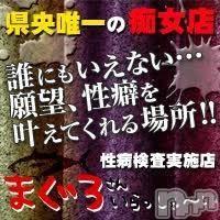 三条デリヘル(マグロサンイラッシャ〜イ)の2018年2月24日お店速報「一度は味わっていただきいこの快感!!!」